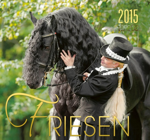FRIESE 2015